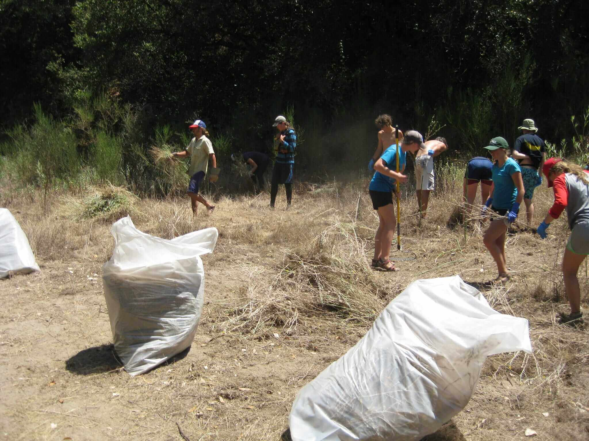 teens pick up trash and fill bags in field