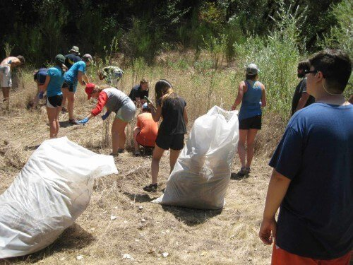 community service projects pulling weeds during a rafting trip