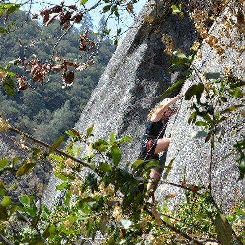 girl rock climbing behind tree branches with helmet and harness